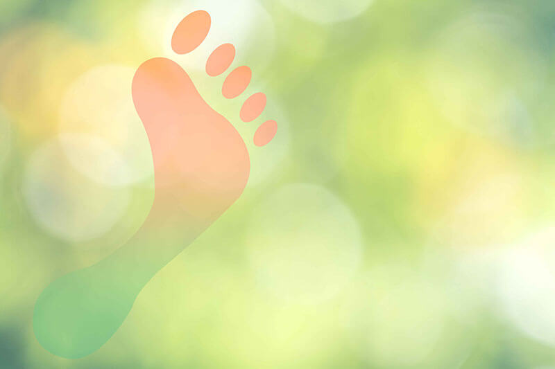 footprint on a green background